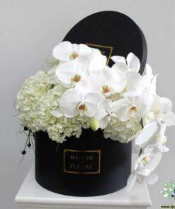 در صورتی که عکس کالای باکس گل طبيعي nfb461 نمایش داده نشد با تیم پشتیبانی هماهنگ کنید.