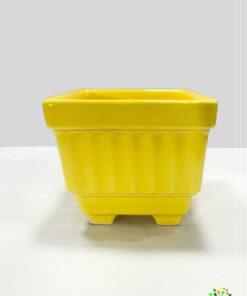 در صورت عدم مشاهده محصول ceramic-vese-zhenus1-paradise_qzparadise_golkade_qazvin-yeloo.jpg با تیم پشتیبانی هماهنگ کنید