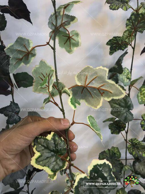 گیاه رونده مصنوعی AFA17
