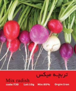 بذر تربچه میکس Mix Radish