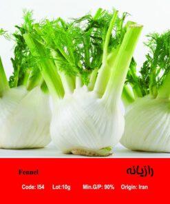 بذر گیاه رازیانه Fennel
