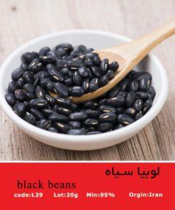 بذر لوبیا سیاه black beans