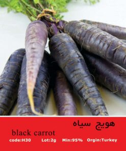 بذر هویج سیاه Black Carrot
