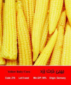 بذر بیبی ذرت زرد Yellow Baby Corn