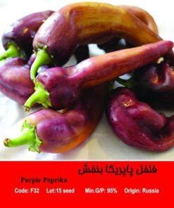 بذر فلفل پاپریکا بنفش Purple Paprika