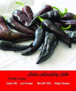 بذر فلفل چارلیستون بنفش Purple Kapia