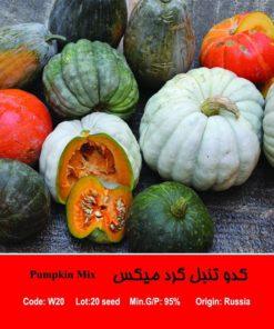 بذر کدو تنبل گرد میکس Pumpkin Mix