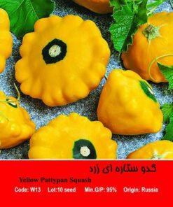 بذر کدو ستاره ای زرد Yellow Pattypan Squash