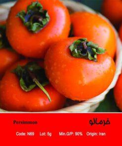 بذر درخت خرمالو Persimmon