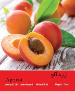 بذر درخت زردآلو Apricot
