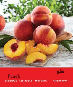 بذر درخت هلو Peach