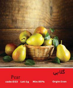 بذر درخت گلابی Pear