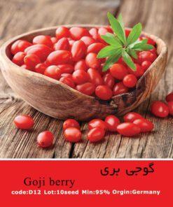 بذر گیاه گوجی بری Gojiberry