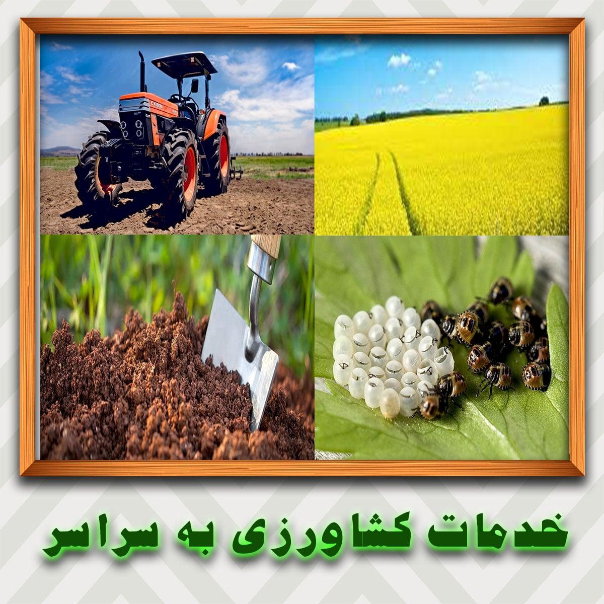 عرضه-خدمات-کشاورزی-به-سراسر-نقاط-ایران-به-صورت-اینترنتی