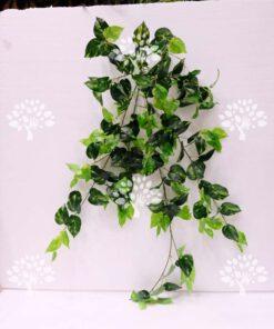 گیاه رونده مصنوعی AFA24 Plant pendant با بهترین کیفیت ها