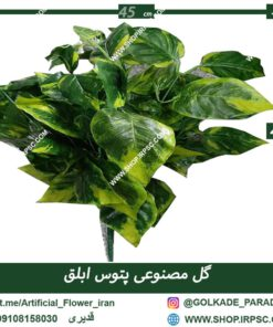 گیاه مصنوعی پتوس