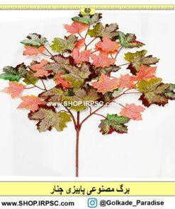 خرید برگ پاییزی چنار