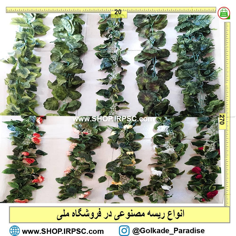 انواع گیاه رونده مصنوعی