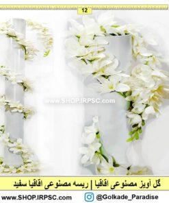 قیمت گل آویز اقاقیا سفید